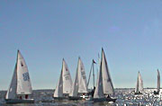 Sonar class boats during a Sailing race. © ATHOC